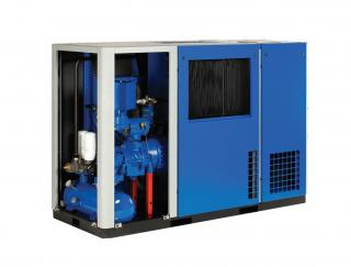 Variable Speed Compressors